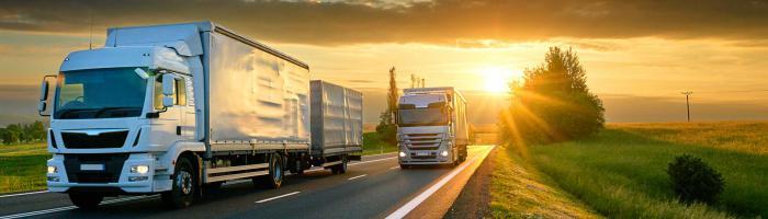 Перевозка грузов по СНГ